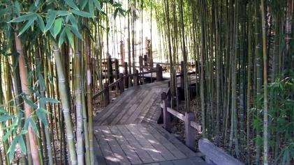 Huntington Japanese Garden DSCF0082
