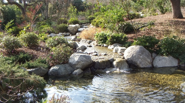 Huntington Japanese Garden DSCF0084