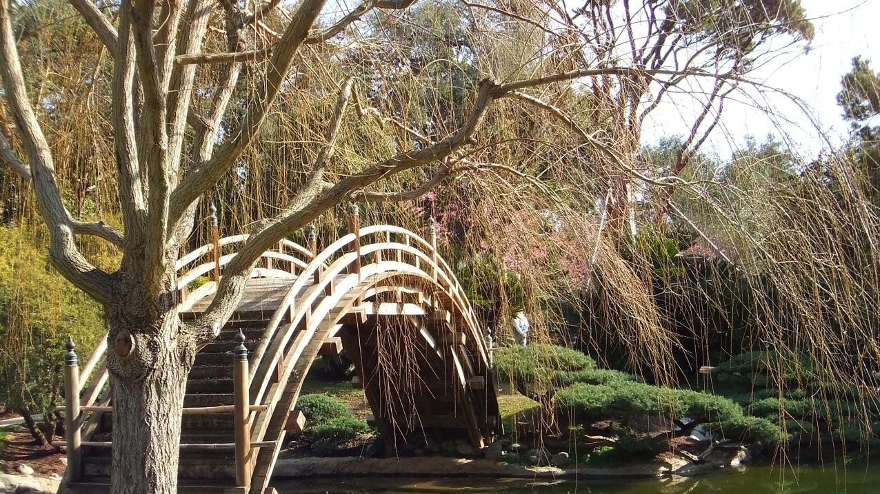Huntington Japanese Garden DSCF1346