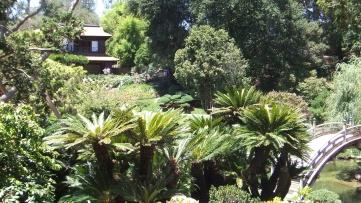 Huntington Japanese Garden DSCF2095