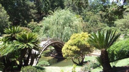 Huntington Japanese Garden DSCF2096