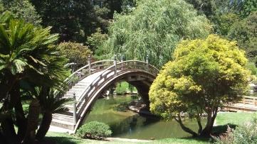 Huntington Japanese Garden DSCF2103