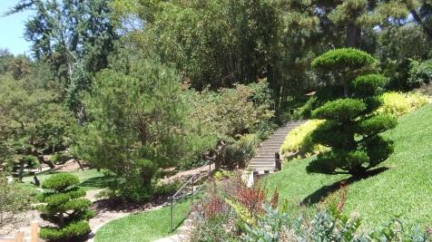 Huntington Japanese Garden DSCF2110