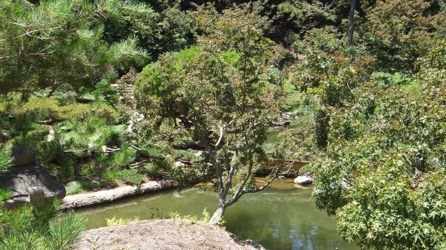 Huntington Japanese Garden DSCF2116