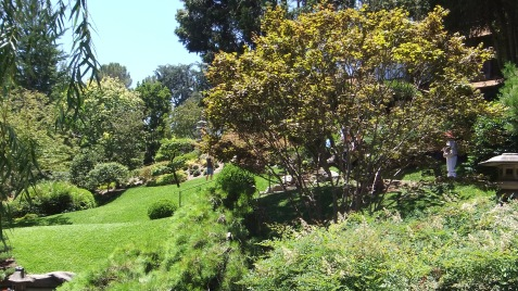 Huntington Japanese Garden DSCF2127