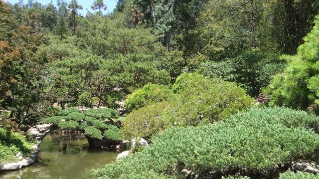 Huntington Japanese Garden DSCF2128
