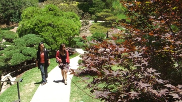 Huntington Japanese Garden DSCF2134