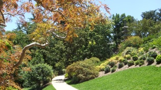 Huntington Japanese Garden DSCF2140