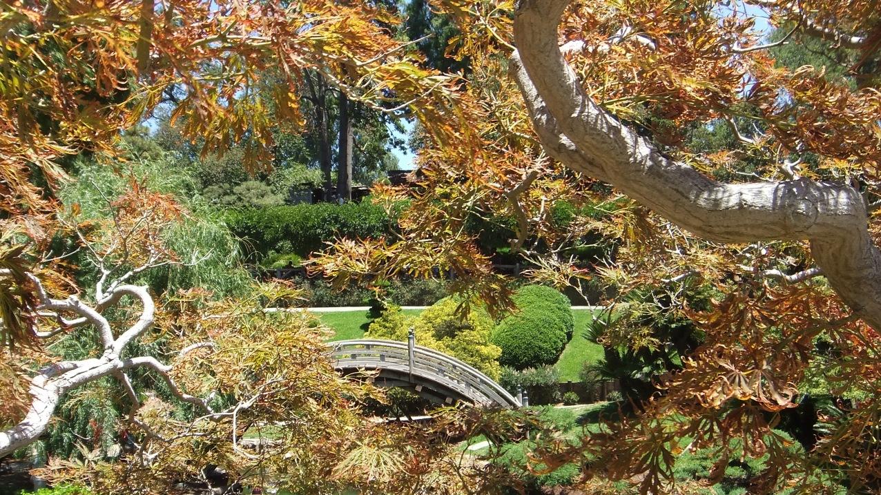 Huntington Japanese Garden DSCF2141