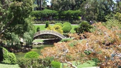 Huntington Japanese Garden DSCF2149