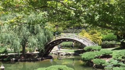 Huntington Japanese Garden DSCF2172