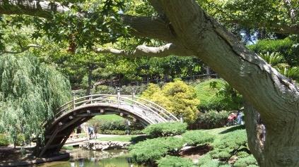Huntington Japanese Garden DSCF2173