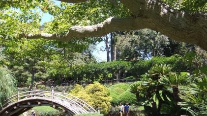 Huntington Japanese Garden DSCF2176
