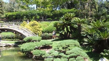 Huntington Japanese Garden DSCF2177
