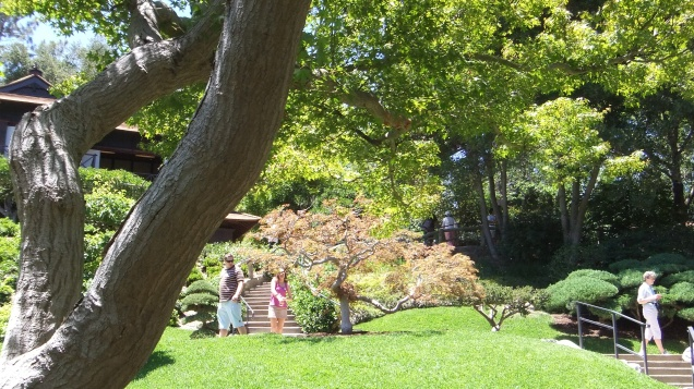 Huntington Japanese Garden DSCF2181