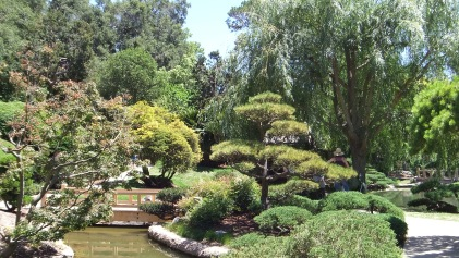 Huntington Japanese Garden DSCF2321