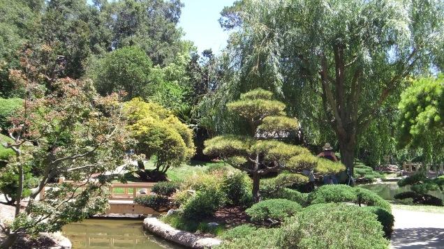 Huntington Japanese Garden DSCF2321