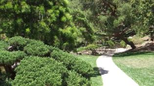 Huntington Japanese Garden DSCF2327