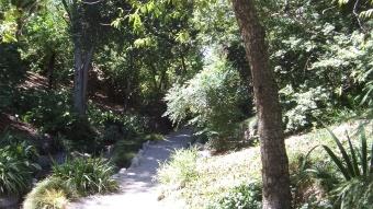 Huntington Japanese Garden DSCF2354
