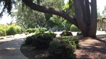 Huntington Japanese Garden DSCF3028