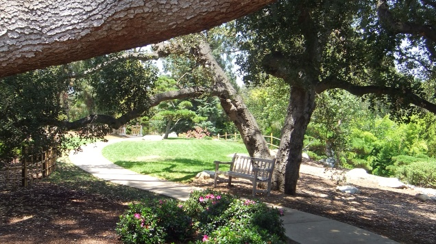 Huntington Japanese Garden DSCF3030