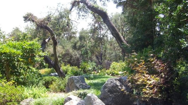 Huntington Japanese Garden DSCF3036