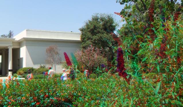 Huntington Shakespeare Garden 3DA 1080p DSCF0364