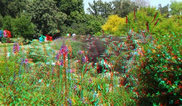 Huntington Shakespeare Garden 3DA 1080p DSCF0369