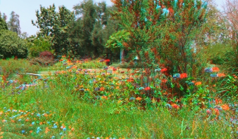 Huntington Shakespeare Garden 3DA 1080p DSCF0969