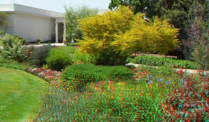 Huntington Shakespeare Garden 3DA 1080p DSCF0974