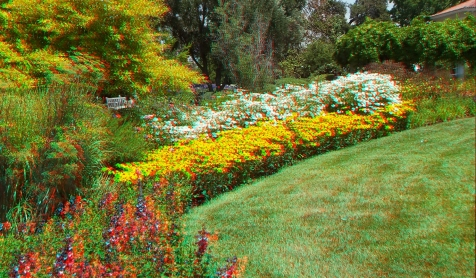 Huntington Shakespeare Garden 3DA 1080p DSCF3080
