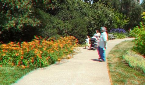 Huntington Shakespeare Garden 3DA 1080p DSCF3082