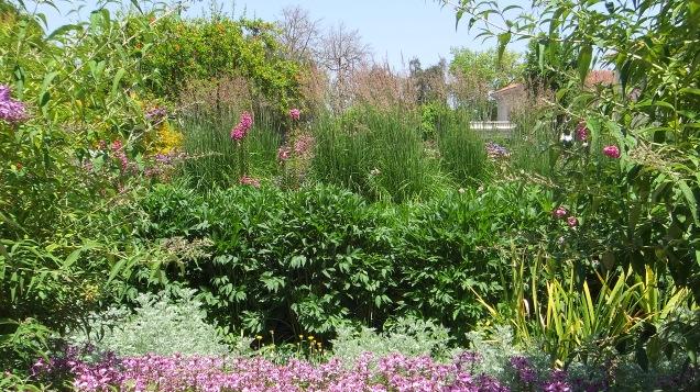 Huntington Shakespeare Garden DSCF0365