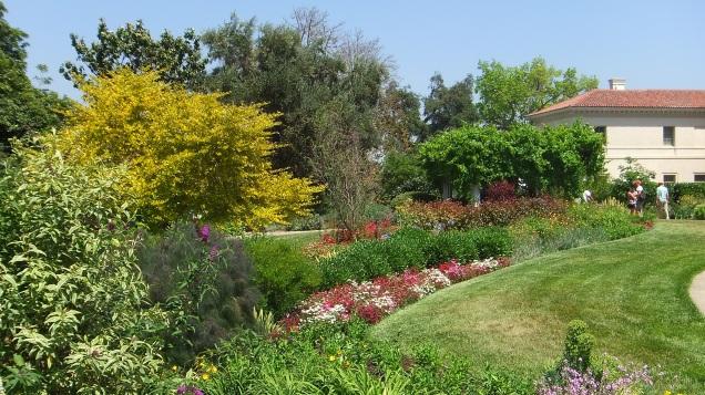 Huntington Shakespeare Garden DSCF0381