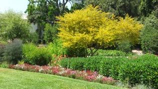 Huntington Shakespeare Garden DSCF0970
