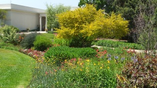 Huntington Shakespeare Garden DSCF0974