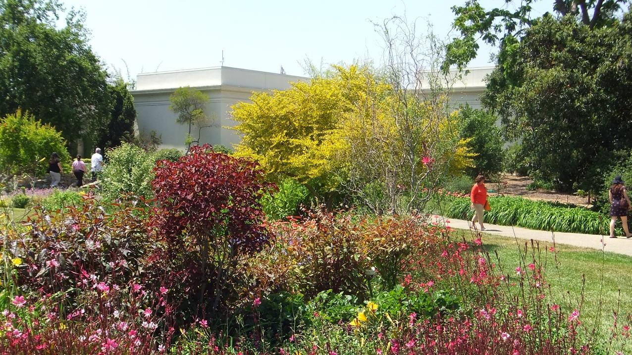 Huntington Shakespeare Garden DSCF0975