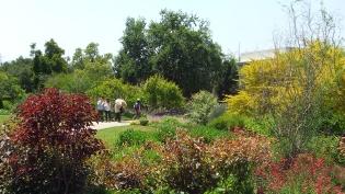 Huntington Shakespeare Garden DSCF0976