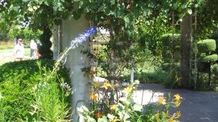 Huntington Shakespeare Garden DSCF3073