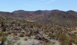 Pinto Wye Mine Site Joshua Tree NP 3DA 1080p DSCF7244