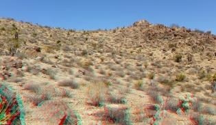 Pinto Wye Mine Site Joshua Tree NP 3DA 1080p DSCF7248