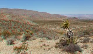 Pinto Wye Mine Site Joshua Tree NP 3DA 1080p DSCF7260
