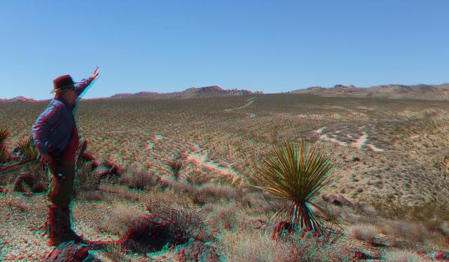 Pinto Wye Mine Site Joshua Tree NP 3DA 1080p DSCF7290