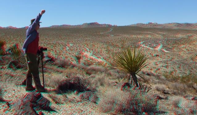 Pinto Wye Mine Site Joshua Tree NP 3DA 1080p DSCF7291