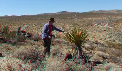 Pinto Wye Mine Site Joshua Tree NP 3DA 1080p DSCF7292