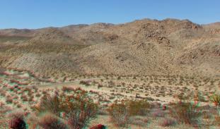 Pinto Wye Mine Site Joshua Tree NP 3DA 1080p DSCF7297