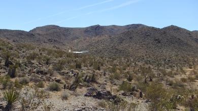 Pinto Wye Mine Site Joshua Tree NP DSCF7244