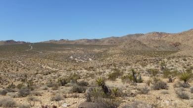 Pinto Wye Mine Site Joshua Tree NP DSCF7264