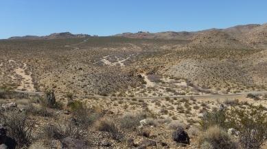Pinto Wye Mine Site Joshua Tree NP DSCF7295