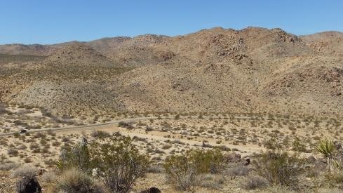 Pinto Wye Mine Site Joshua Tree NP DSCF7297